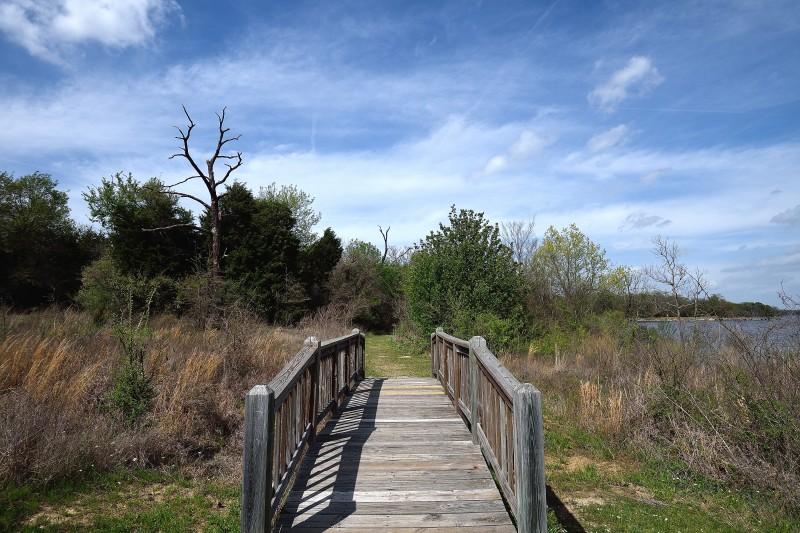 Bridge to Springtime