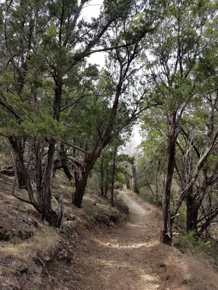 Redbird Landing Trail