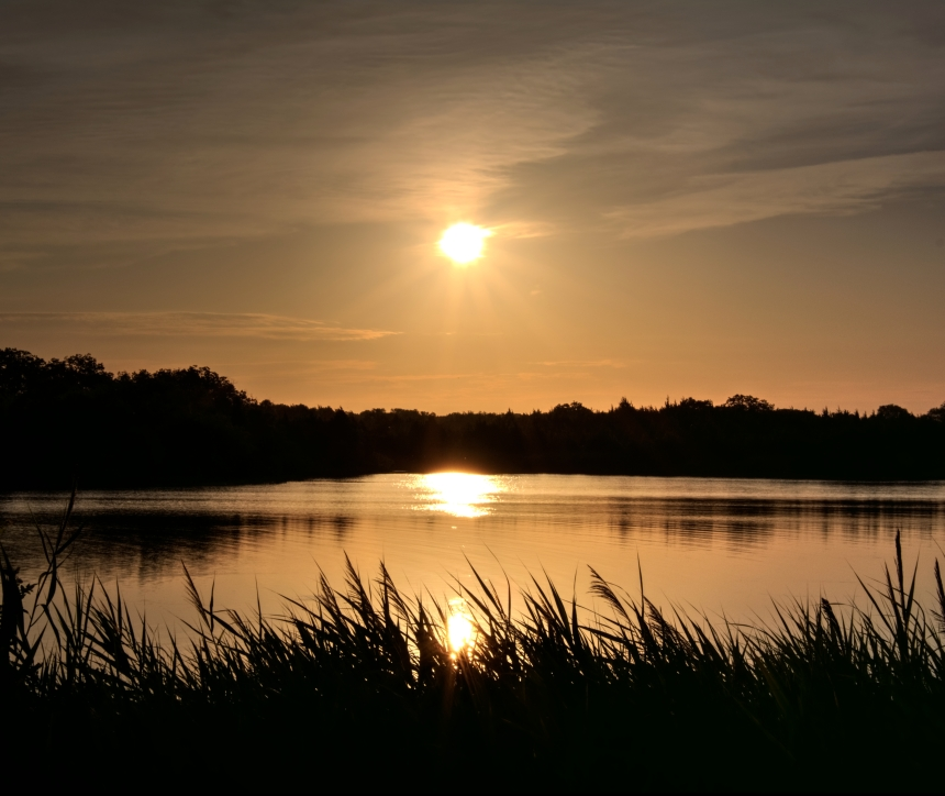 Sunrise on the Pond_Optimizer